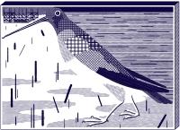 http://christoph-feist.de/files/gimgs/th-43_8_029vogelbitmap.jpg